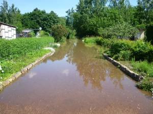 Überschwemmungsgebiet